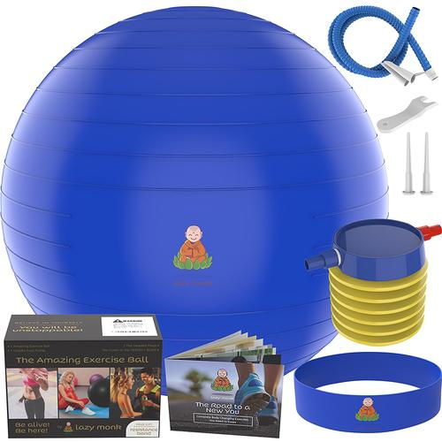 55cm Stability Ball