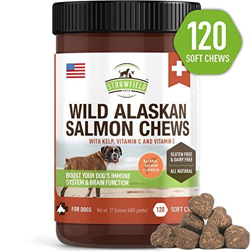 Salmon Dog Treats
